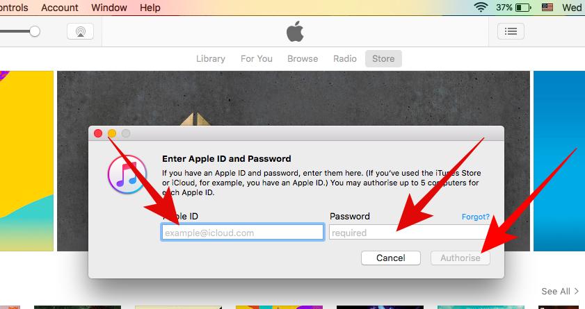 Enter iTunes Email & Password